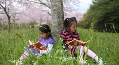 children reading books under a tree