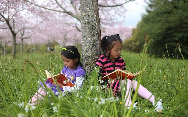children reading books under a tree